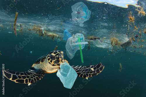 Fotomural Environmental issue of plastic pollution problem