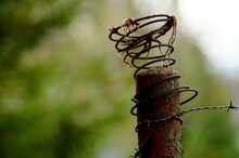 Close-up Of Barbed Wire On Bollard