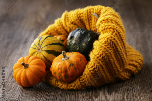 Foto autumn still life with fresh pumpkins for decoration
