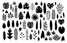 Vector Set Of Silhouette Tropi...