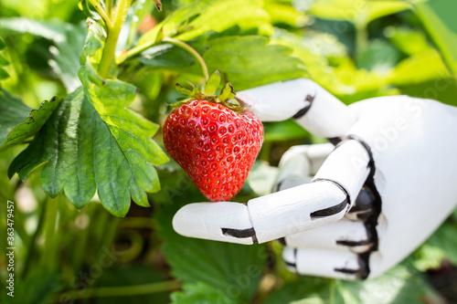 Leinwand Poster AI Farmer Assistant Picking Fresh Fruit