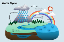 Diagram Of Water Cycle, Hydrol...