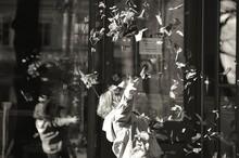 Girl Throwing Dry Leaves In Mi...