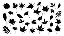 秋の葉っぱ_シルエット