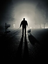 Silhouette Man Walking With Dogs On Road In City
