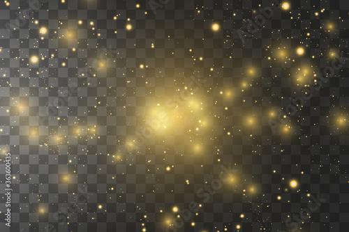 Fototapeta Shining golden stars isolated on black background. Effects, glare, lines, glitter, explosion, golden light. Vector illustration. obraz