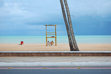Two Lifeguard Firefighters Sitting Inside The Sentry Box On Background Of Sidewalk, Beach, Sea And Cloudy Sky With Two Palm Trees