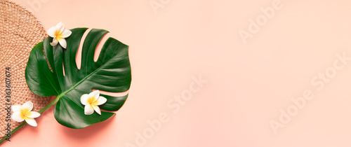 Tropical palm tree leaf and flower on a rose background. Vibrant minimal fashion concept. Panoramic design with copy space