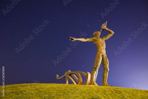 Obraz na płótnie Statue On Grass Against Sky At Night