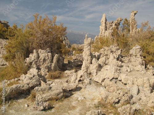 Fotomural Close up of tufa columns, South Tufa Trail, Mono Basin National Forest Scenic Ar