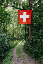 Swiss Flag Hanging In Forest