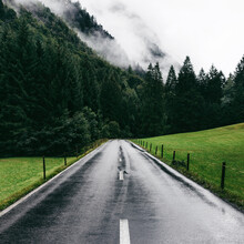 Wet Road And Fog In Lush Swiss Alps