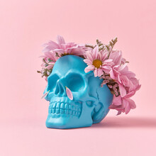 Flowers Petals On A Skull With Wreath.