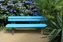 Blue Bench In A Park