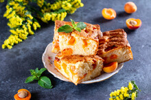 Homemade Sponge Cake With Apricots In A Plate