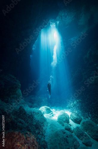 Fotografie, Tablou Person Swimming In Sea