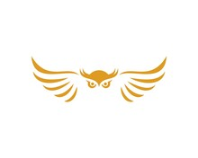 Owl Head With Spread Wings With Gold Colors