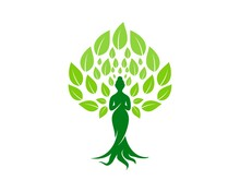 Beauty Woman Tree With Dense Green Leaves