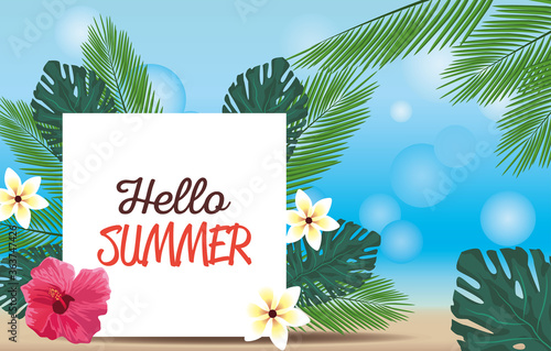 hello summer season holiday with lettering and flowers © Jemastock