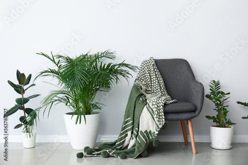 Fototapeta Interior of modern room with armchair obraz