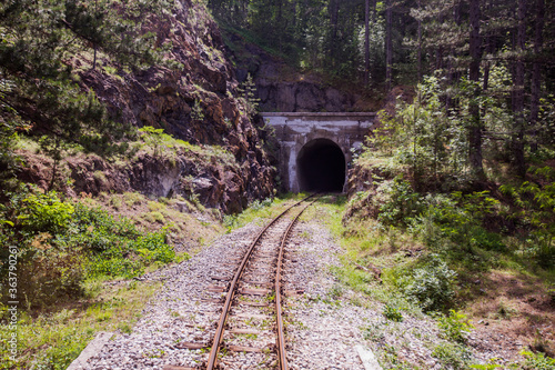 Obraz na plátně Old railway tunnel on Narrow-gauge railway, Tourist Attraction, old-fashioned tr