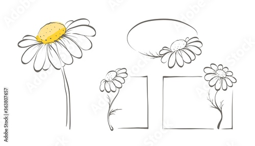 Cuadros en Lienzo Decorative daisies