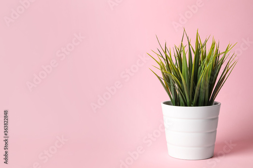 Fototapeta Beautiful artificial plant in flower pot on pink background, space for text obraz