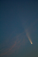 Neowse comet