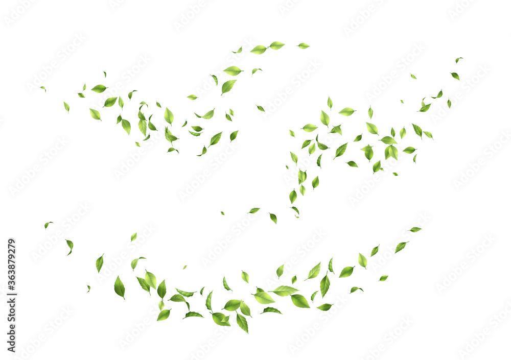 Fototapeta Flying green leaves