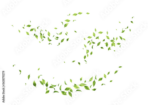 Canvas-taulu Flying green leaves
