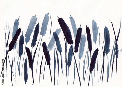 Fototapeta Watercolor painting with monochrome cattail grass