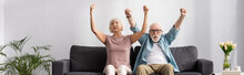 Panoramic Crop Of Positive Senior Couple Showing Yeah Gesture On Couch In Living Room
