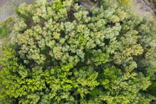 Drone Capture Of Vigorous Lake...