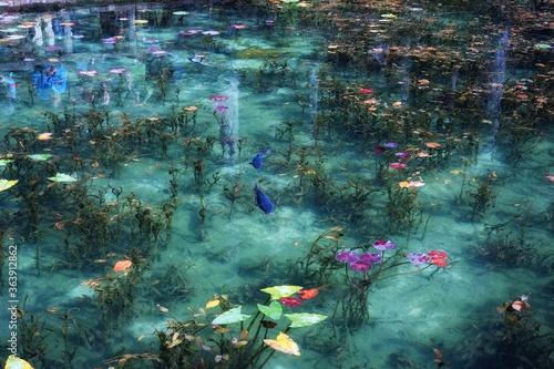 Slika na platnu High Angle View Of Plants And Fish In Pond