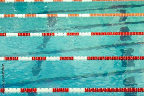 Red and white swim lane lines in a crisp pool Wallpaper Mural