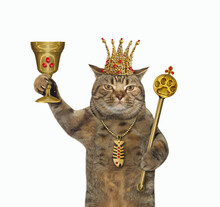 The Beige Cat King In A Golden...