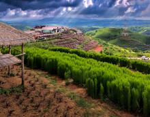 Beautiful Landscape View On Hi...
