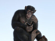 The Monkey And Smartphone. A M...