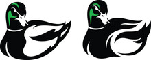 Simple Design Of Grumpy Drake Mallard  (Green Head Duck) Vector