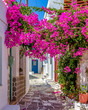 Picturesque alley in Prodromos Paros greek island with a full blooming bougainvillea !! Whitewashed traditional houses with blue door and flowers all over !!!
