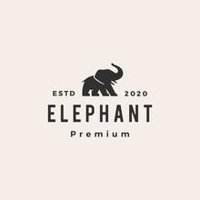 Elephant Hipster Vintage Logo Vector Icon Illustration