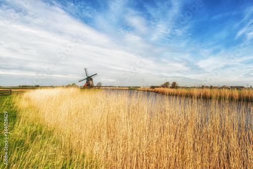 Fotografie, Obraz Typical dutch landscape