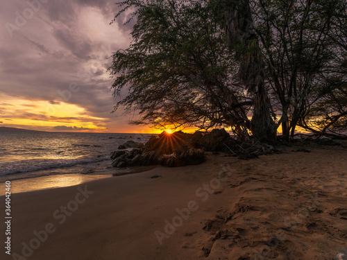 Fototapeta sunset in maui obraz na płótnie