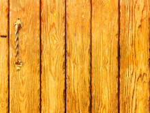 Old Wooden Planks Cracked, Green Moss On A Rustic Background