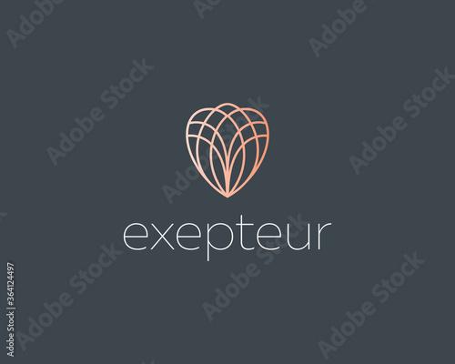 Abstract elegant line art flower crystal brilliant logo icon vector design Canvas Print