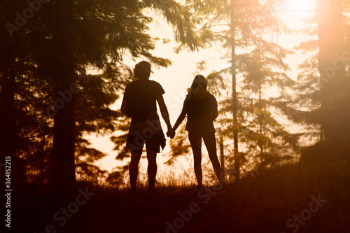 Fototapeta Young couple silhouette holdings hands together in the sunny nature