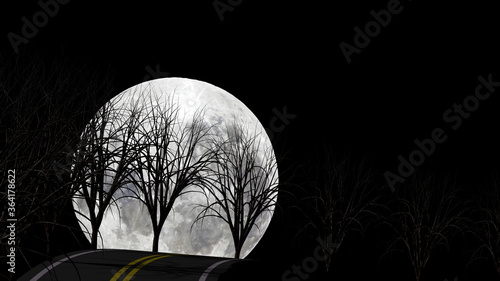 Without leaf tree silhouette on steep hill rural road with falling full moon in Canvas Print