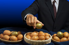 Smart Businessman Allocates Golden Egg Into Many Baskets. Do Not Put All Eggs In One Basket. Has A Good Return On Investment In Each Business