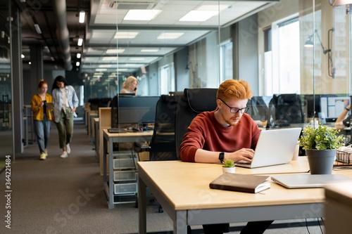 Fototapeta Young contemporary businessman in eyeglasses looking at laptop display obraz