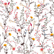 Beautiful Gentle Botanical Flowers Blooming Garden Mood Seamless Pattern In Vector EPS10 ,Design For Fashion, Fabric,textile,wrapping ,wallpapers And All Prints